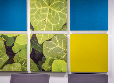 Wall panels from Ecophon